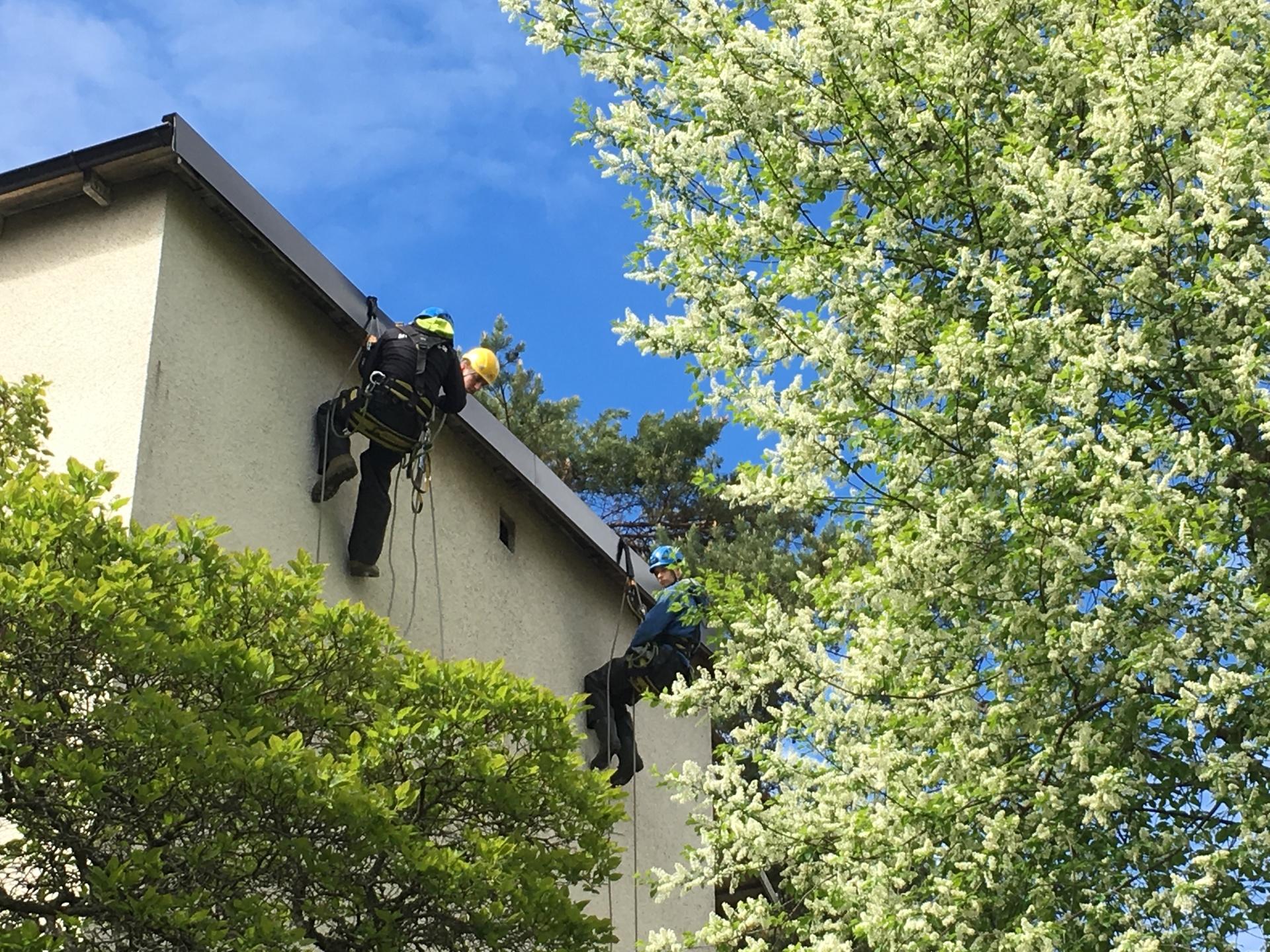 person klättrar på fasad med gröna träd i förgrunden
